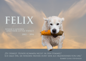 FELIX.2.