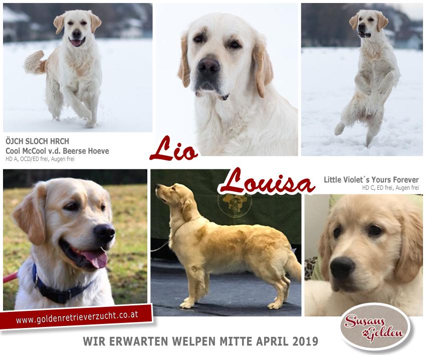 wurf-lio_louisa_2019